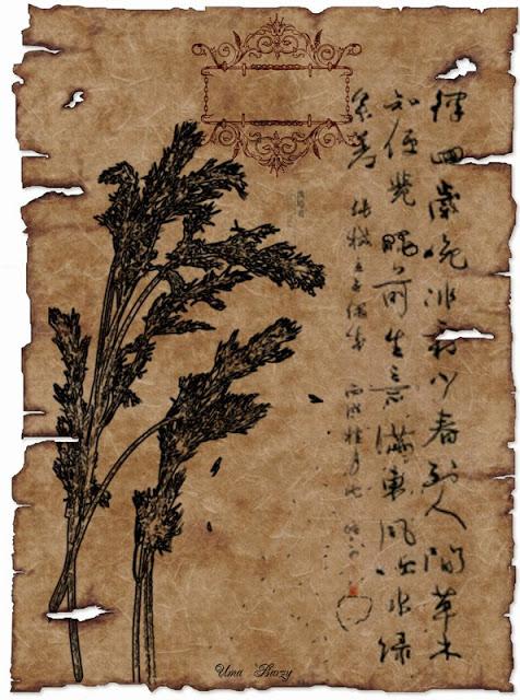 древние китайские визитки